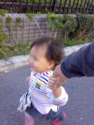 20081018018.jpg